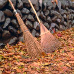 Arrow Physical Therapy Fall Gardening Tips